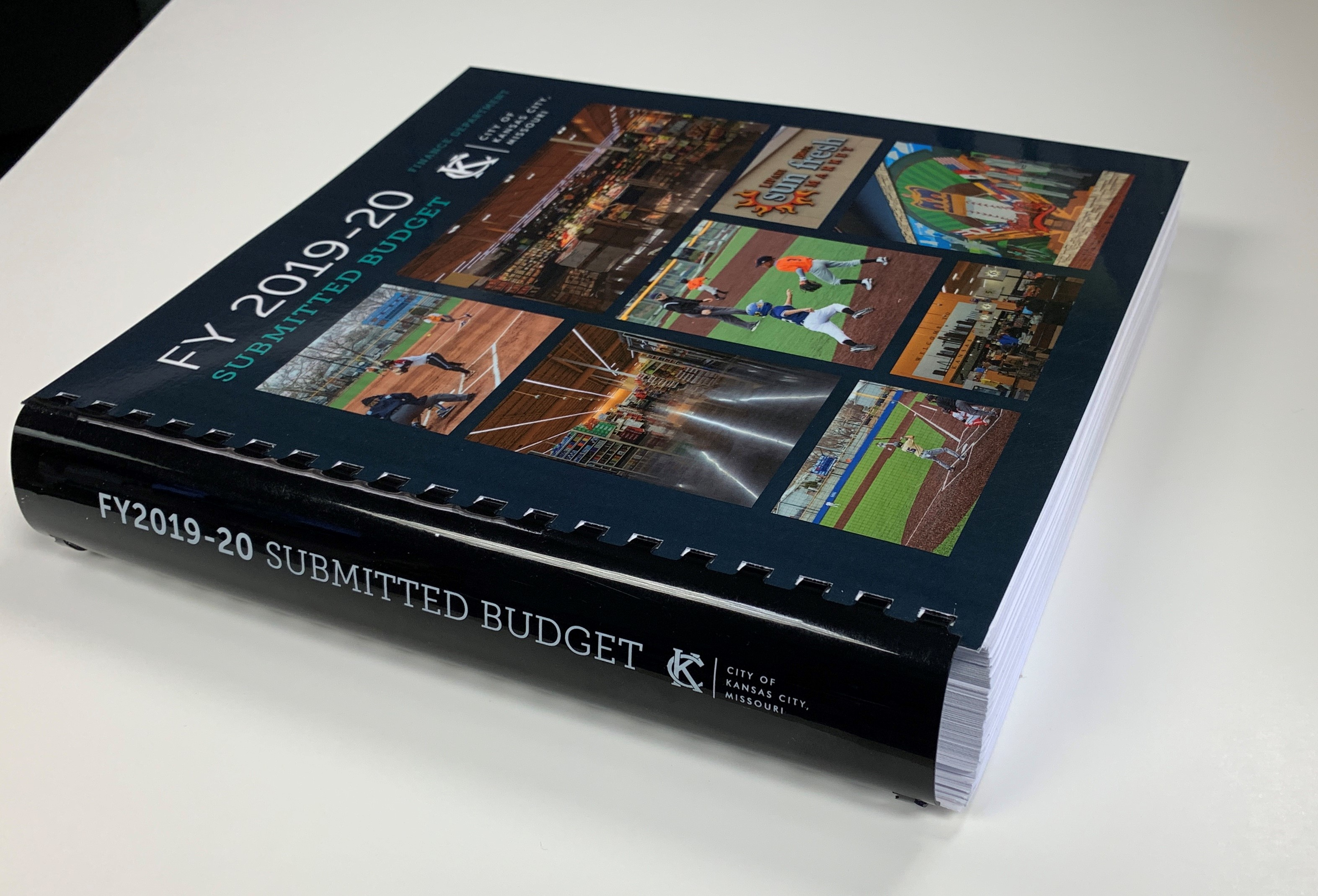 FY2019-20 Submitted Budget