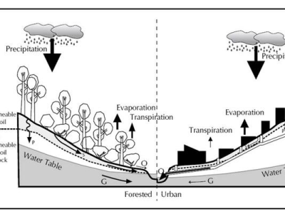 Stormwater Catchment System