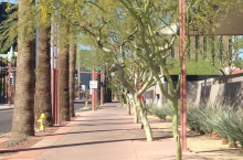 Wider sidewalks with shade and street buffers (like trees!) will encourage more walking. This is in front of PHX Art Museum.
