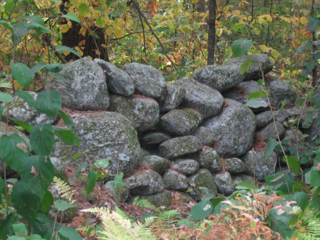 stone wall near Quabbin reservoir. This is important to me since it represents the rich history of our town.