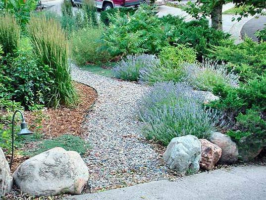 Water Efficient Landscaping