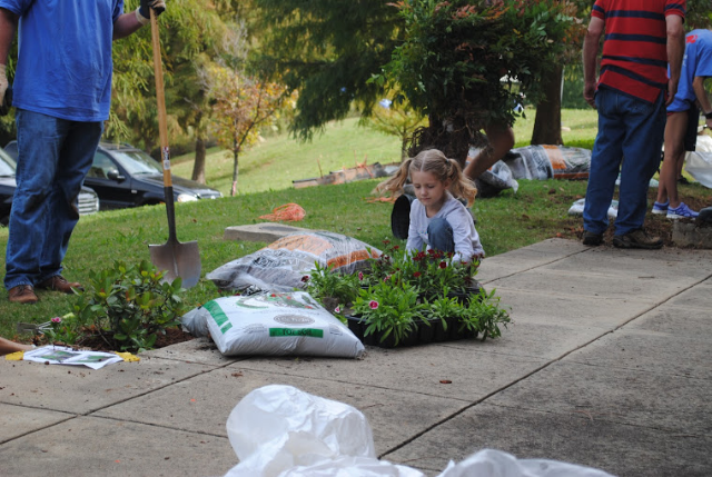 Avondale Elem. Kindergarten student Addison Baylor helps spruce up school grounds at the Community Work Day, organized by AUMC and CUMC.