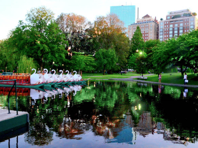 "Boston Icon monumental John Hancock ""shaded"" by inspiring Public Garden green space, trees pond swan boat Boston symbol"