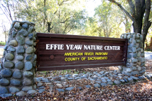 The Effie Yeaw Nature Center