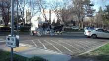 A horse drawn carriage in front of the Crocker Art Museum.