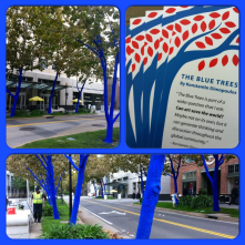 blue trees on k street. this installation makes me feel so proud to live in a city that tremendously values public art!