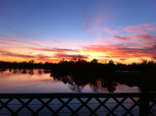A recent winter sunset at the confluence of the American & Sacramento rivers as seen during my daily bike commute & best part of every day!