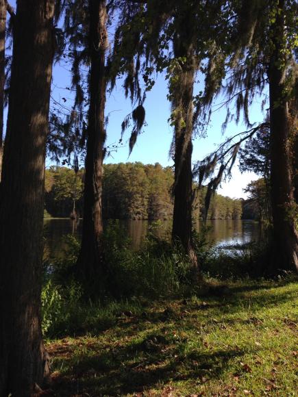 Greenfield Lake bike path