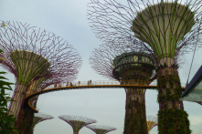 Supertrees in Singapore. They mimic the function of trees: collect solar energy/rainwater, air intake/exhaust functions, etc.