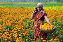 Leapfrogging: Many villages in India are  running their businesses from villages thanks to mobile phone and internet