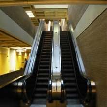 Malls became hotspots for the young and mature after escaltors were created.