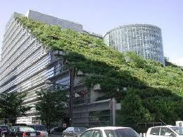GREEN BUILDINGS STEPS