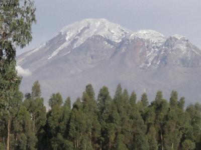 Riobambeñita