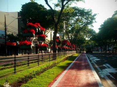 creating bike lanes