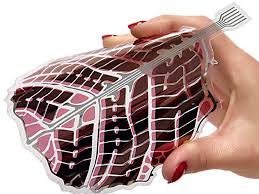 Organic solar cells are pliable , non-toxic and have 5% by weight of a conventional plate. It converts solar energy in eletrical