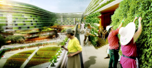 Source: Treehugger.com; Credit: Spark<br/>Proposal from Singapore as demonstration of future of living architecture
