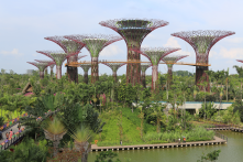 Gardens by the Bay, Singapore - Especially the plans for it and the supertree grove, shown here
