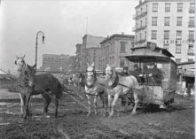 Emphasis both on the technology of a horse drawn streetcar, but also the health issues from below the tracks...