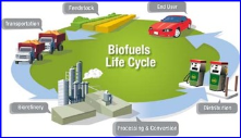 bio fuel cycle