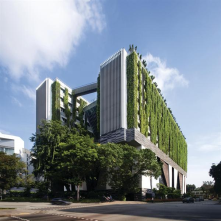 Vertical Greening: Bringing the greeneries above the ground<br/>School of the Arts by WOHA Architects<br/>Singapore