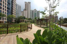 Creating Urban Wetland<br/>Alexandra Canal, Singapore<br/><br/>Part of the government program for a garden in the city, then later city in the garden