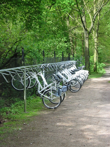 This 2005 photograph shows bicycles that are free for use in national park Hoge Veluwe, the Netherlands.