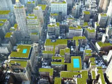 A greener Chicago. Green roof.