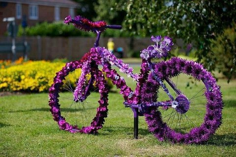 a cycle made by flower