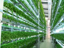 vertical farms...where we will produce our food