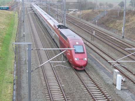 Belgia HSL-1: the most fastest train. Max speed: 300 km/hours. They can reach Paris to Brussels  in 90 minutes!
