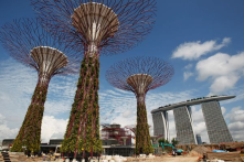 SuperTrees provide a green, eco-friendly, and not to mention sufficient ways to beat the beaming sun and pressuring heat.
