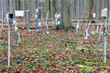 "Wireless Sensor Network Monitors Microclimate in the Forest<br/>http://www.scienceda<wbr/><span class=""wbr""></span>ily.com/releases/201<wbr/><span class=""wbr""></span>1/05/110519101028.ht<wbr/><span class=""wbr""></span>m"