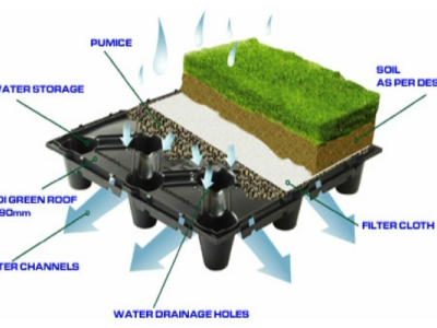 Green Roofs producing Oxygen!!!