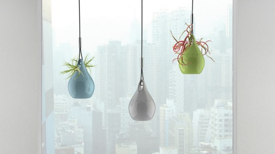 A beautiful idea, hanging pendant that uses the purifying power of plants to clean the air in your home!