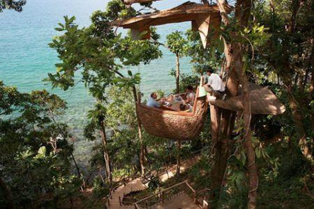 Tree Pod Restaurant