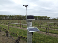 Temperature@lert's temperature and environmental monitoring solutions provide both real-time and historic views of a location's temperature