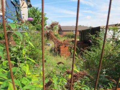 Liverpool brownfield > urban gardens
