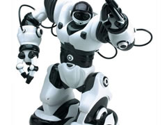 A truth robot for kids and grown people. It´s called Robosapien.