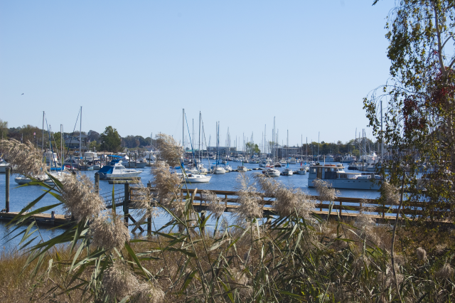 Milford Harbor in early Autumn