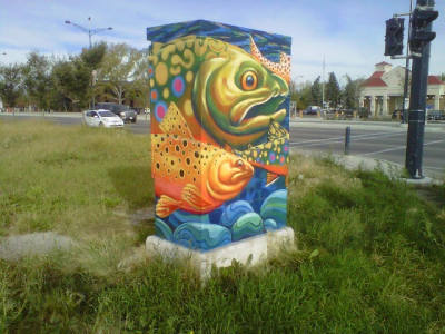 Utility Box Art Projects