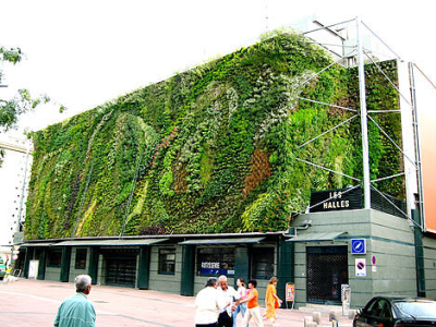 Vertical Gardening/Living Wall