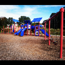 Long Meadow Park hosts a large playground structure, 2 youth baseball fields, multiple basketball courts and an outdoor pool
