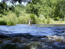 Fishing on Poudre River