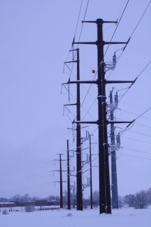 The electrical lines were buzzing from the sleet hitting the lines. This photo was taken out behind Lincoln Middle School.