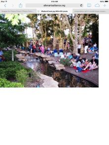 Families enjoying public areas