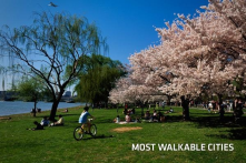 We need a walkable city center with more green space.