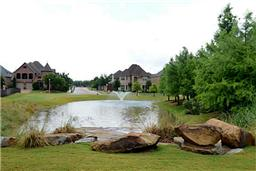 "Creating a neighborhood ""central park and pond"" for residents- such as Willow Pond in Frisco."