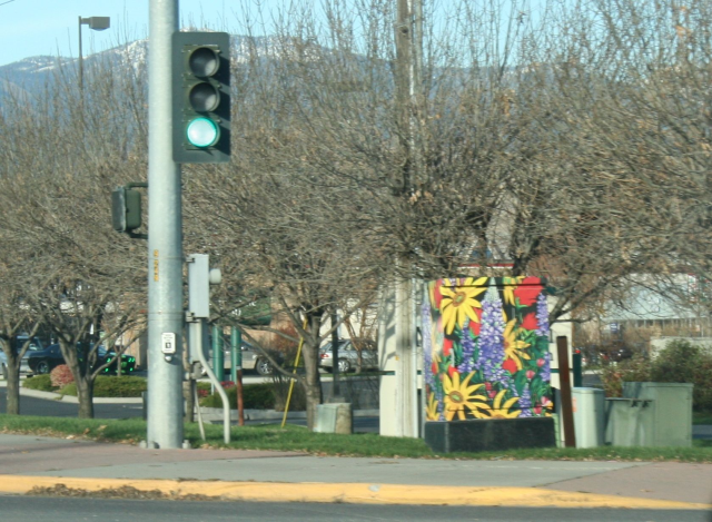 I recently traveled to Montana where I witnessed boring traffic boxes become works of art. Each one was unique.