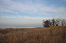 South Shore Nature Sanctuary: a nice little beach and habitat restoration project.