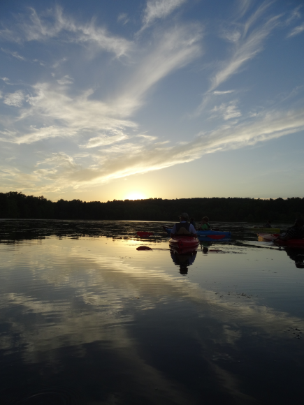 Sunset Kayak Trip at NS on Honker Lake: Great opportunity to see tons of wildlife. Perfect time of day. `